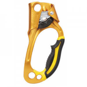 Petzl ASCENSION B17WRA